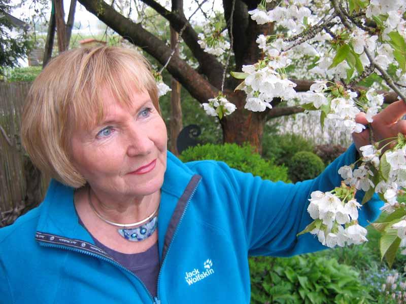 birnbaum pflanzen anleitung